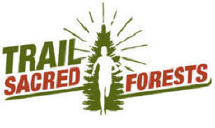 Trail Sacred Forest